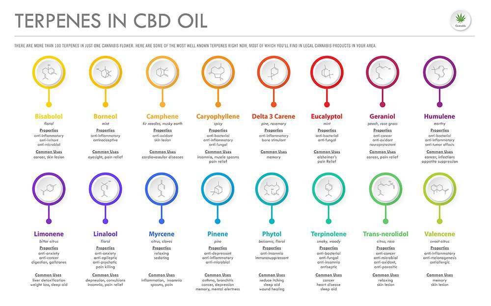 The Bud House Cannabis Dispensary